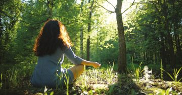 Trend-ForestBathing-Web