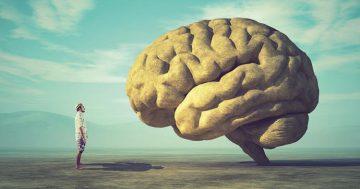 GEZ_hersenen